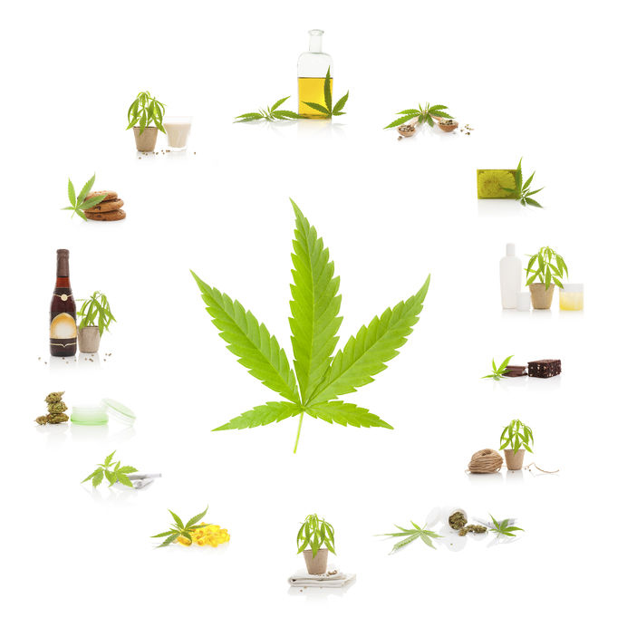 Marijuana Attorney - cannabis and its usage. marijuana leaf and marijuana products isolated on white background. cosmetics, hemp milk, hemp oil, cookies, brownies and nutritional supplements.
