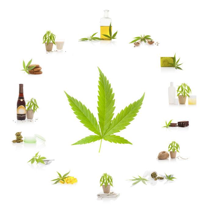 Marijuana Attorney - cannabis and its usage. marijuana leaf and marijuana products isolated on white background. cosmetics, hemp milk, hemp oil, cookies, brownies and nutritional supplements.